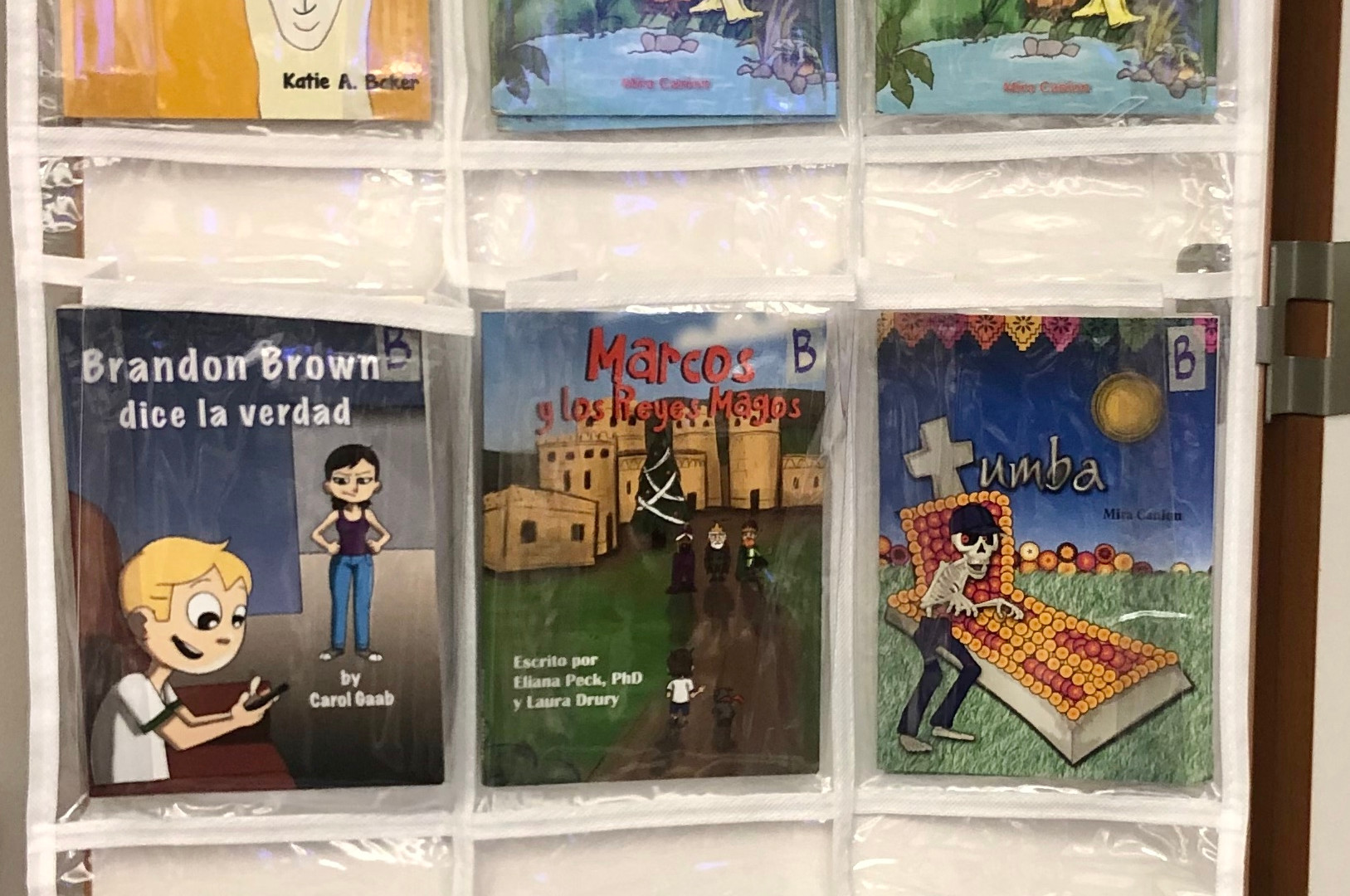 Spanish Classroom Library