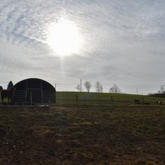 Farm5.png