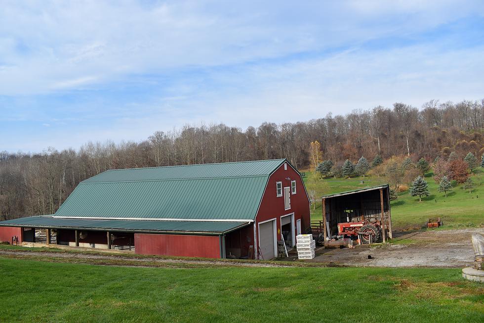 Coyne Farm House