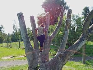 Pella climbing a tree.jpg