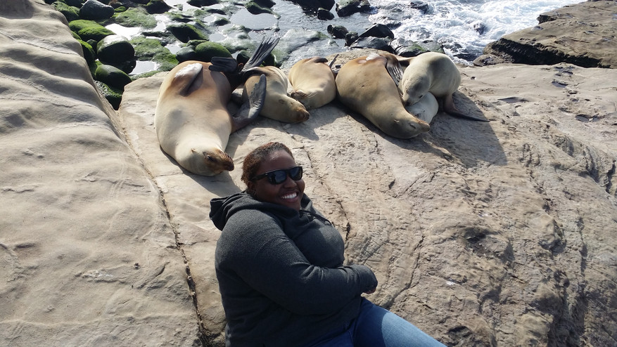 Pella and the seals in La Jolla.jpg