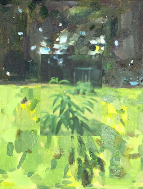 Backyard Effects, No. 10