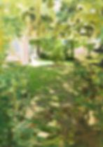 backyardeffects#2.jpg