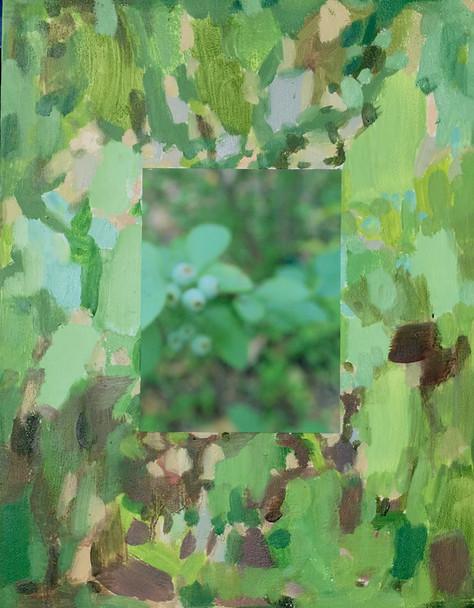 Backyard Effects, No. 11