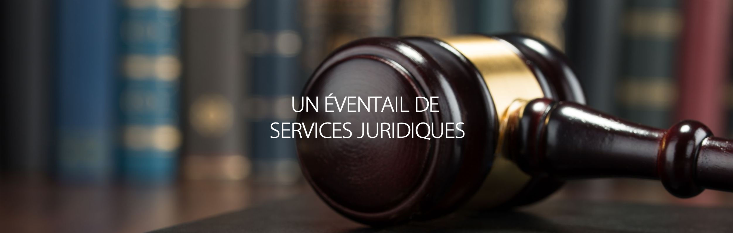 Excellente expertise en droit