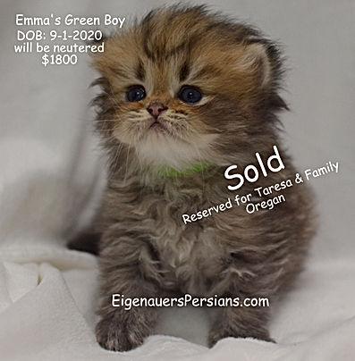 Emmas Green Boy 1.JPG