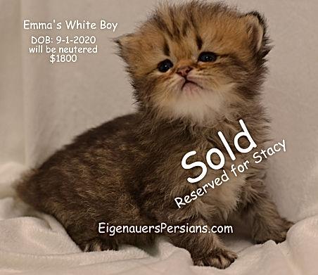 Emmas white boy..,.JPG