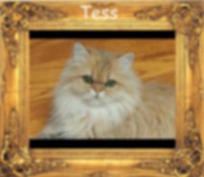 Tess..,.jpg