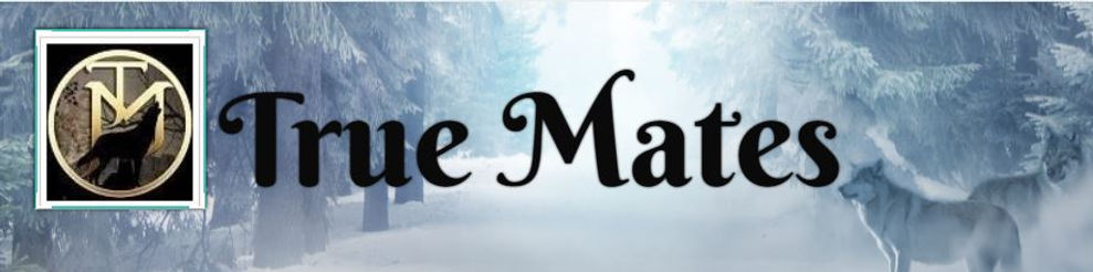 true mates banner.JPG