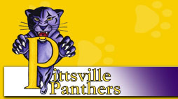 PITTSVILLE VOLLEYBALL DROPS HOME MATCH TO WITTENBERG-BIRNAMWOOD