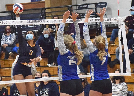 COLUMBUS CATHOLIC'S WALKER, PACELLI'S STRUBLE EARN FIRST-TEAM ALL-STATE VOLLEYBALL HONORS