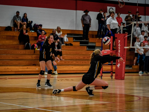 PACELLI VOLLEYBALL DOWNS ROSHOLT IN CWC SOUTH OPENER