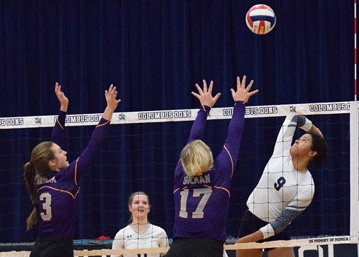 COLUMBUS CATHOLIC VOLLEYBALL DROPS OPENER AT McDONELL