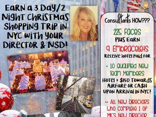 Free Christmas trip to NY City!