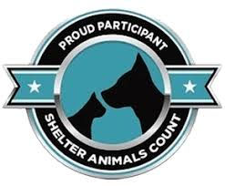 Shelter_Animals_Counts_participant.jpg
