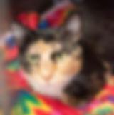 frecks9.jpg