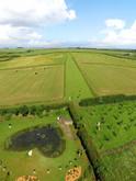 Shire-Farm-heart-chakra.JPG