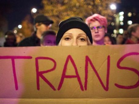 Argentina lidera la Revolución Trans en el Mundo.