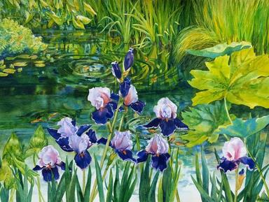 Watergarden with Iris  Beverly Abel smal