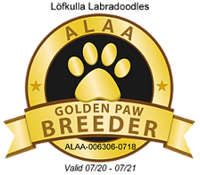 Lofkulla Golden Paw 2020.png