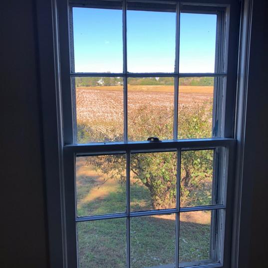 Window Cleaning Mt Gilead