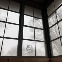 Locust Window Cleaning