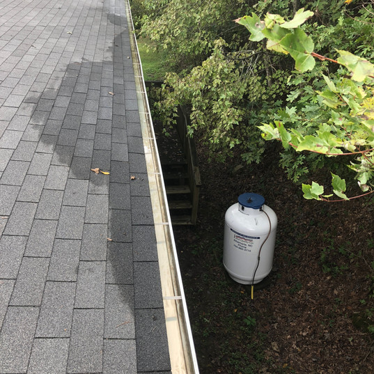 Gutter Cleaning Kannapolis