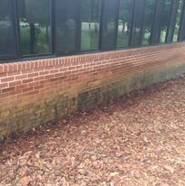 Brick Cleaning Albemarle