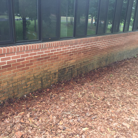 Brick Cleaning Albemarle