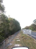 Pacific Highway, Ballina, Koala proof fence 6000 meters