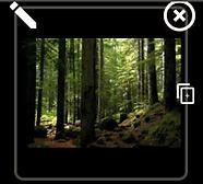 photo slideshow.png