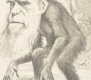 EVOLUTION VS THE PERENNIAL PHILOSOPHY