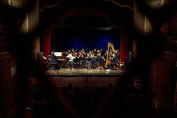 Musicarte Ensemble 2.jpg