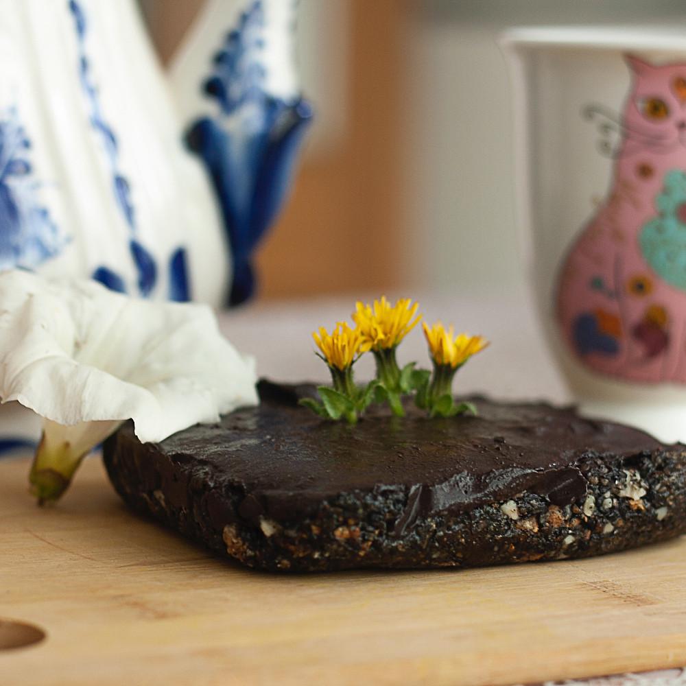 Wild blackberry & chocolate raw cake
