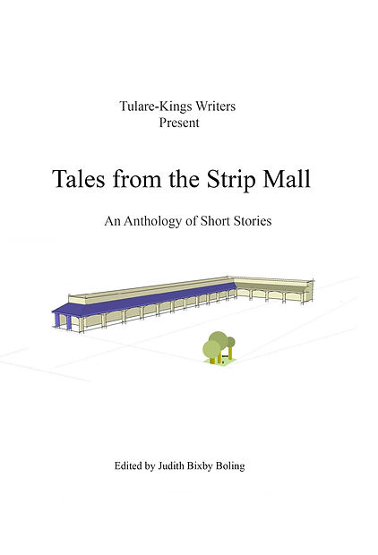 Strp Mall Front Cover Only.jpg