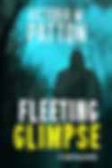 Fleeting Glimpse cover PSD.jpg