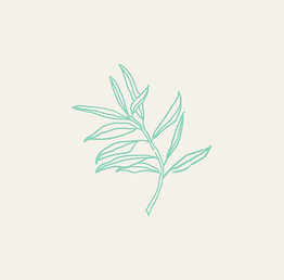 Holistique-leaf-blocked_edited.png