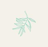 Holistique-leaf-blocked_edited_edited.pn