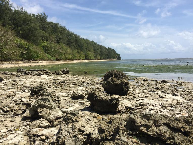 White Beach, Peleliu