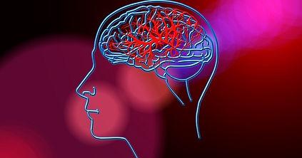 que-trata-la-neuropsicologia-social.jpeg