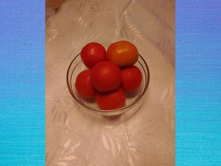 עגבניות מרובעות, חופש ועוצמה