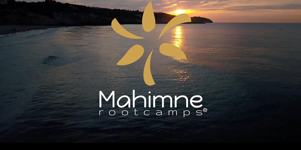 Rootcamp April 2019