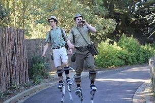 Adventure nuts on stilts Wellington Zoo
