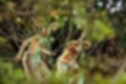Mythical fauns on stilts