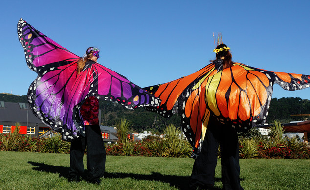 Colourful butterfly entertainers.jpg