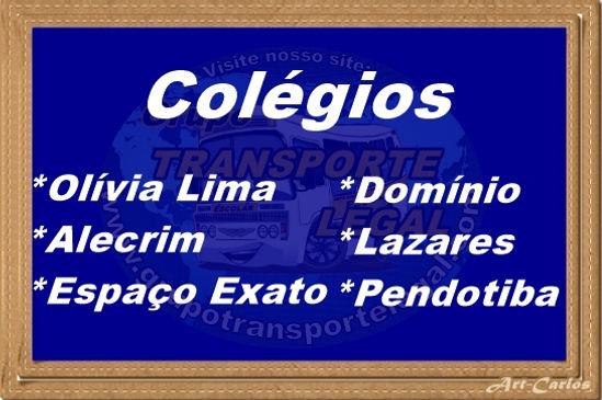 Transporte escolar Ti Ricardo - Grupo Transporte Legal Niterói