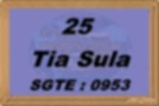 Tia Sula - Grupo Transporte Legal