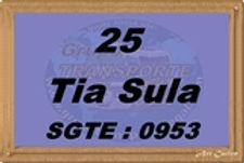 Tia Sula - Grupo Transporte Legal