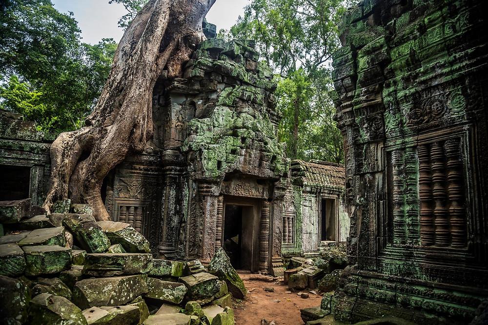 Un des nombreux temples au alentours de Angkor, celui de Ta Prohm qui se distingue des autres grâce a sa végétation insolite qui englouti les structures (Sylvain Freulon©)