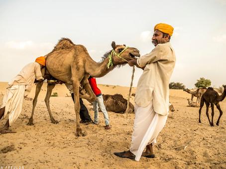 Jaisalmer: la vie dans un desert. Partie3